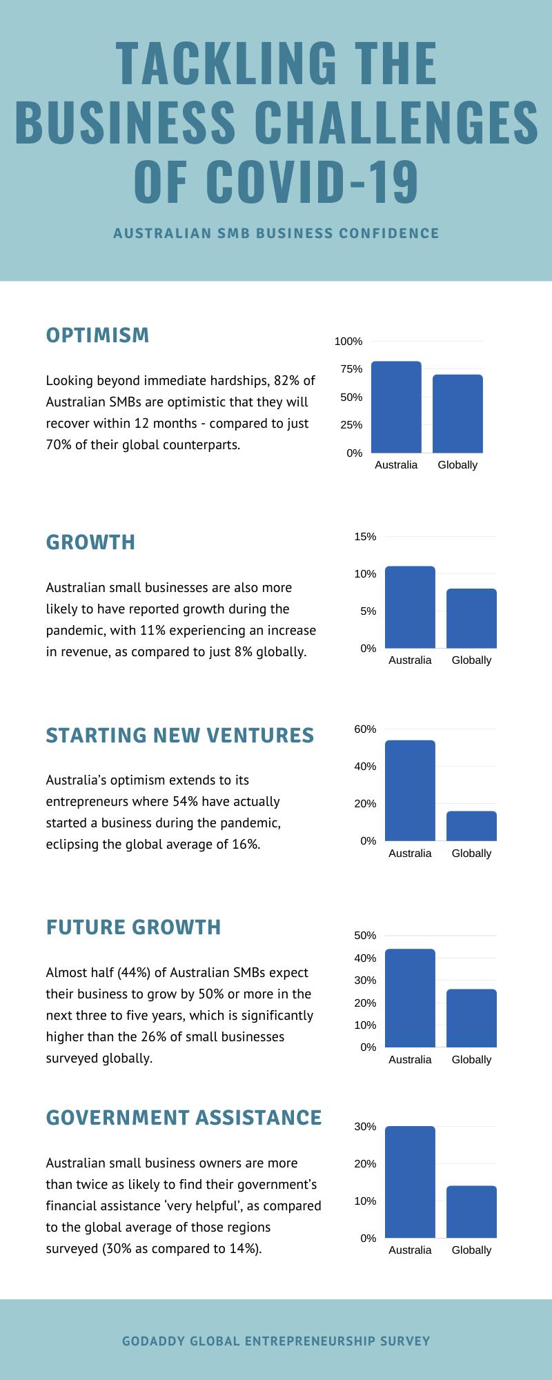 GoDaddy Global Entrepreneurship Survey Infographic