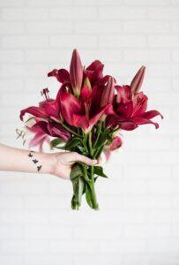 Instagram Ads Person Holding Stargazer Lilies