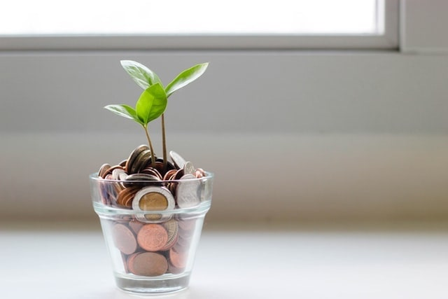 Plants Growing Out of Cup of Coins