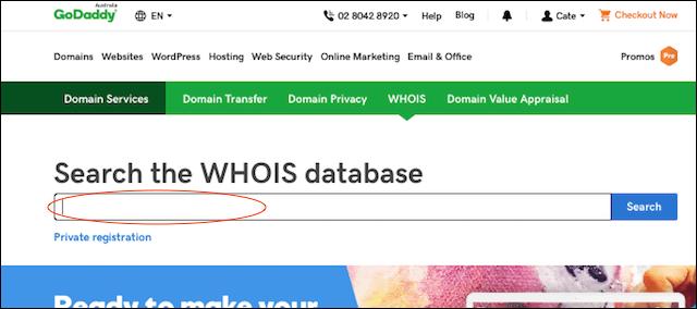 Domain Lookup GoDaddy Lookup Screen