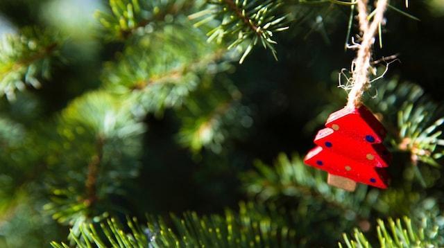 eCommerce Ideas Ornament on Tree