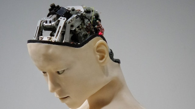 Google SEO Robot