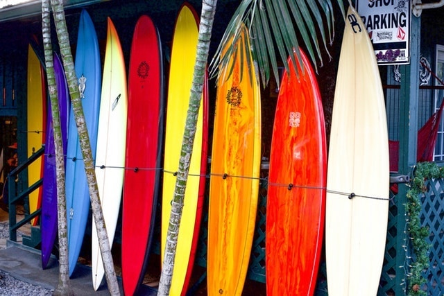 Small Business Grants Surfboards Lined Up